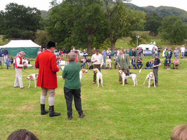 Ullswater Foxhounds at Dog Day - Courtesy of Patterdale Dog Day