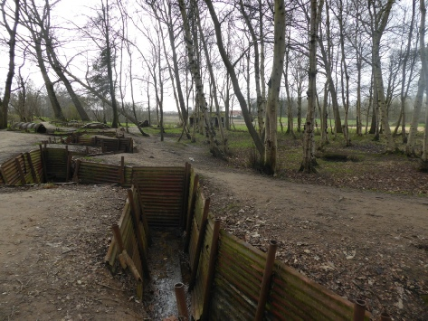 Trenches at the Hill 62 and Sanctuary Wood Museum - Photo © Rob Shephard